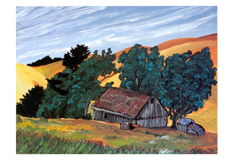 Wind, Old Barn, Marin